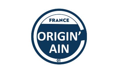 logo Origin Ain